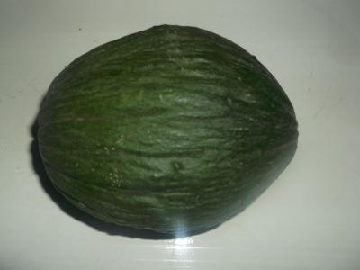 VALENCIA Winter-Melone Samen