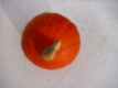 Hokkaido-Kürbis rot Samen