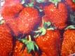 Monats-Erdbeeren-Rügen Samen