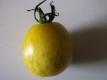 Tomate Golden Sweet Samen